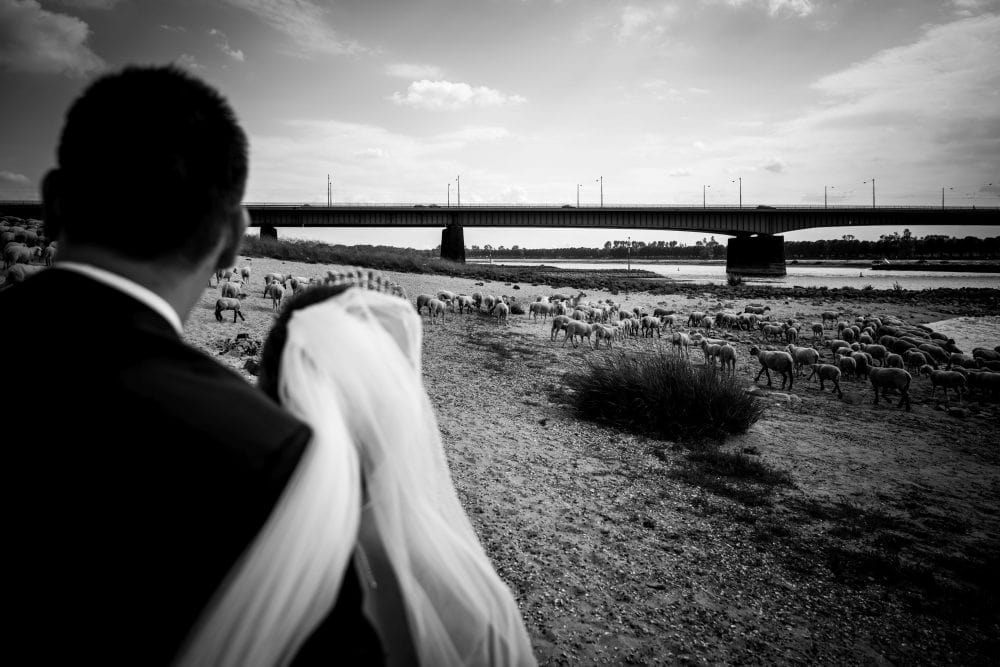 Kroatische Hochzeit in Düsseldorf: Hochzeitsshooting